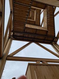 So schön war es auf dem Frankfurter Goetheturm