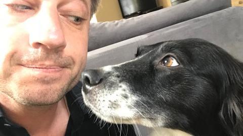 Hundekeksverhandlungen