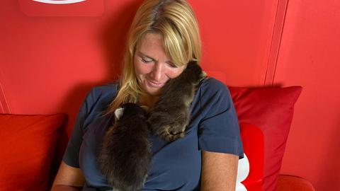 Waschbär-Babys besuchen Tanja und Tobi im hr3 Studio