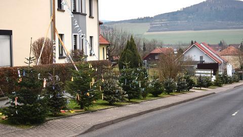 """Ehemalige Weihnachtsbäume in der """"Prinzenstraße"""" in Geisa"""