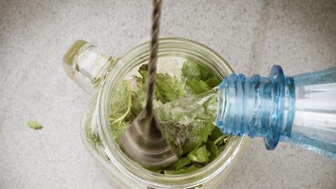 Schritt-für-Schritt-Anleitung: Holunder-Melisse-Limonade