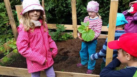 """Kinder aus dem Waldkindergarten """"Die Wühlmäuse"""" in Rodgau pflanzen ihren Kürbis ein"""