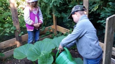 """Kinder gießen ihre Kürbispflanze im Waldkindergarten """"Die Wühlmäuse"""" in Rodgau"""