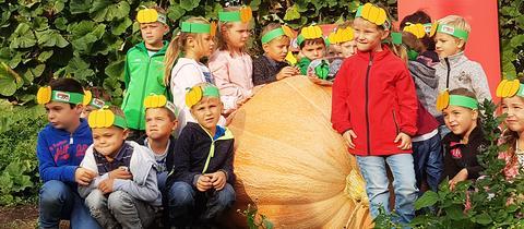 """Die Kinder des Kindergartens """"Weschnitz-Wichtel"""" haben mit """"Fanti 2"""" die hr3 Kürbiswette 2018 gewonnen"""