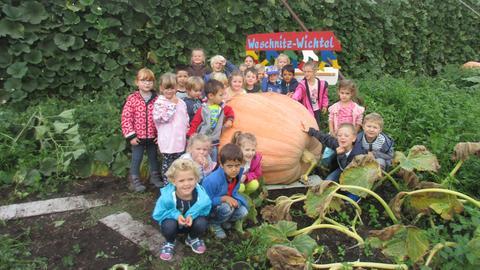 Kindergarten Weschnitz-Wichtel aus Einhausen