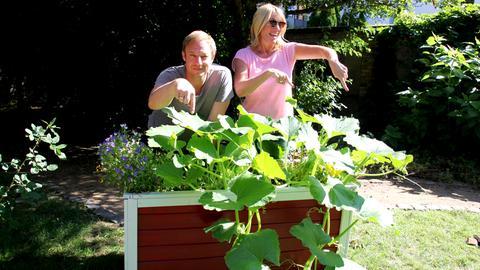 Kürbis-Gärtner Tobi und Tanja