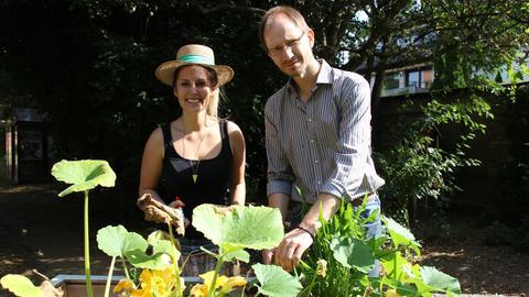 Kate schneidet die Kürbispflanze zurück