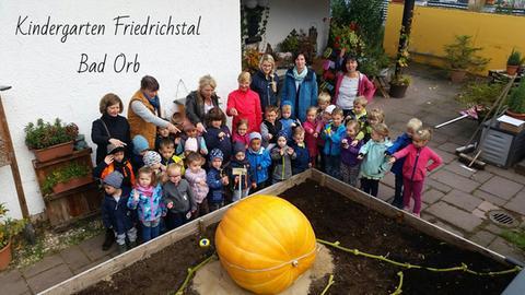 Der Kürbis aus dem Kindergarten Friedrichstal in Bad Orb