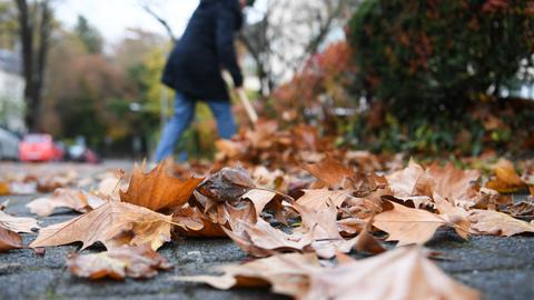Laub Gehweg Herbst