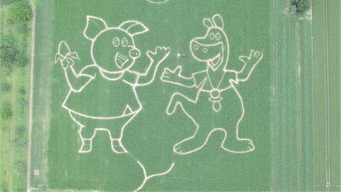 Urmel und Mama Wutz als Maisfeldlabyrinth-Motiv