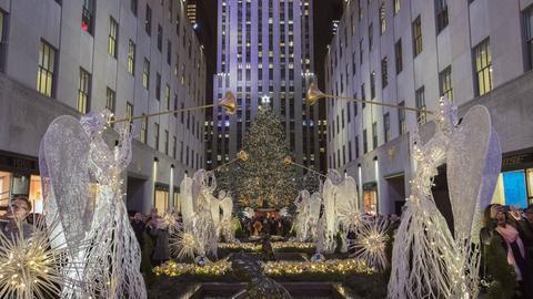Tanjas New York Highlights