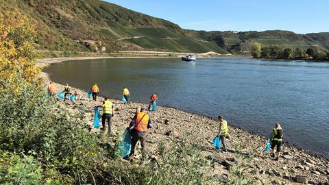 Rhine Clean Up 2018