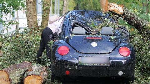 Ein umgestürzter Baum auf einem Autodach