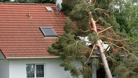 Ein Baum ist in ein Haus gestürzt