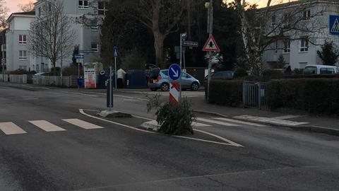 Weihnachtsbaum entsorgen - So nicht!