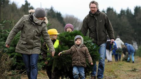 Eine Familie trägt einen selbst geschlagenen Weihnachtsbaum