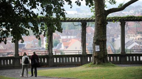 Die Weinbergterrassen in Kassel